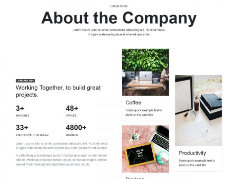 Company at a glance with 3 card